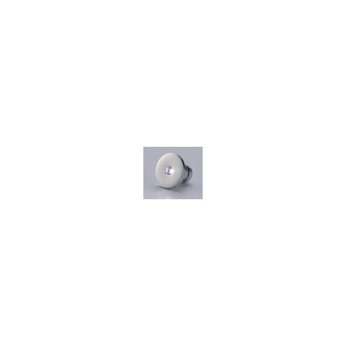 APIS Mini LED Courtesy Light White