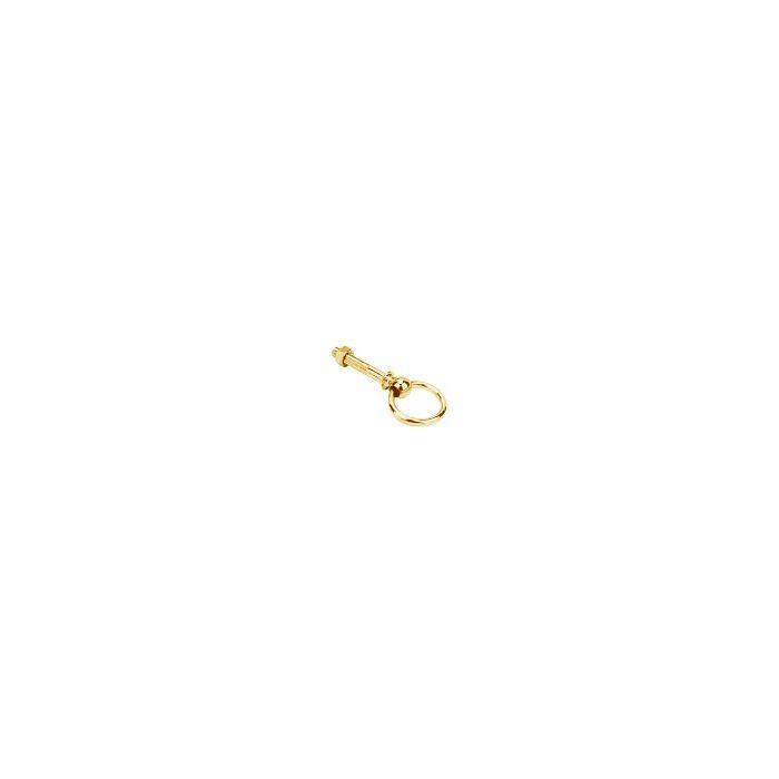 Ringbolts Brass